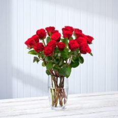 Buy red roses for Valentine's Day from Postabloom