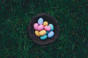 Where to hide Easter eggs for the Easter egg hunt.