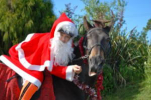 Santa horseriding for a personalised christmas card