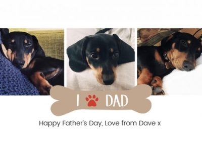 Happy father's day - from the dog